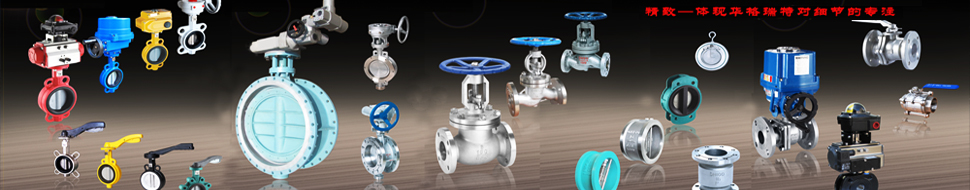 Butterfly Valve Page
